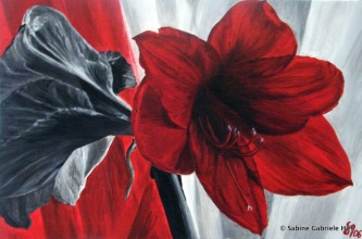 "AMARYLLIS, 2006 Acrylic on Canvas, 24x36"""