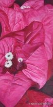 "BOUGAINVILLEA, 2005 Arcylic on Canvas, 36x18"""