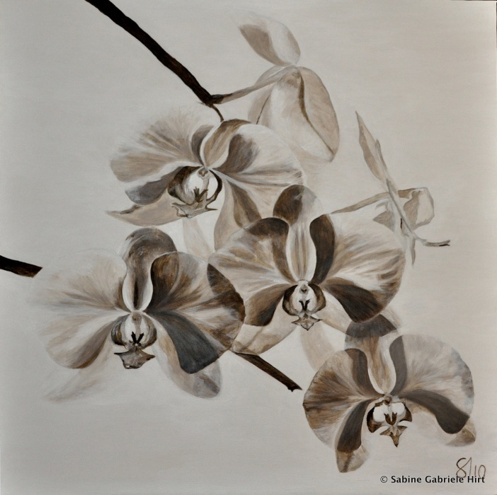 WHITE ORCHIDS, 2011 Acrylic on canvas, 36x36""