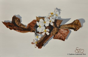 """WILTED, 2012, Acrylic on Canvas, 24x36"""""""
