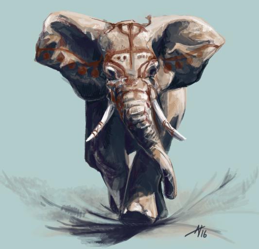 Elephant Charging A